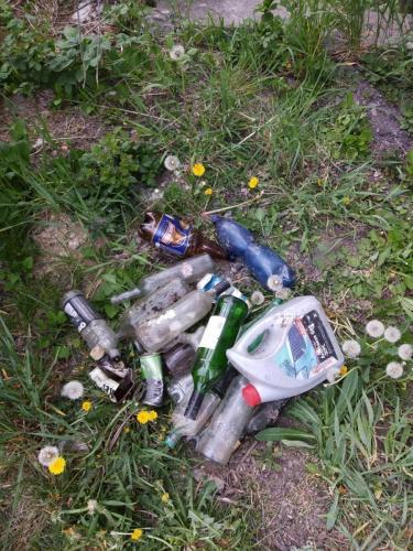 025 Viki - zber odpadkov (Pohybov)