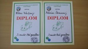 získané diplomy